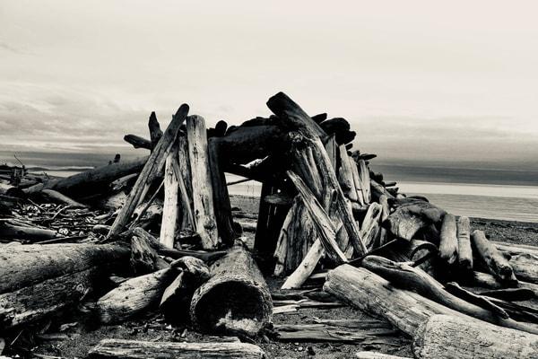 Shelter, Shades Of Gray Art | Friday Harbor Atelier