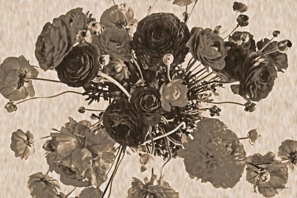 photographicprint, jackierobbinsstudio,taupe, richness, buyartonline, sepia, wallpaper, oldfashione