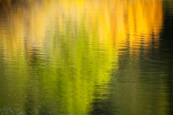 Fall On Water Art | Karen Hutton Fine Art