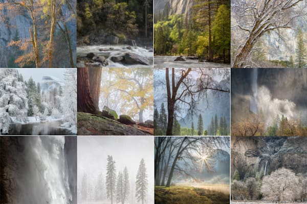 Portfolio One: Yosemite Fantasia | Charlotte Gibb Photography
