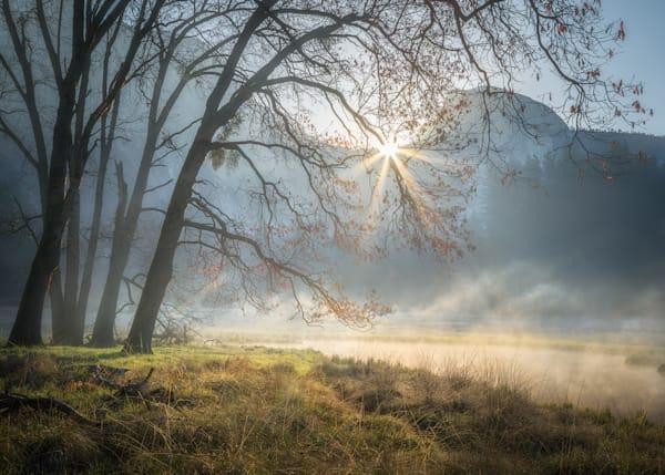 Half Dome Morning Light Photography Art | Charlotte Gibb Photography