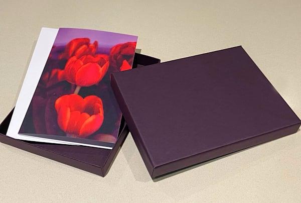 greetingcard, boxedset, collectiblebox, colorinfused, photographicimages, jackierobbinsstudio, buyartonline, firstedition, greetingcardwiter