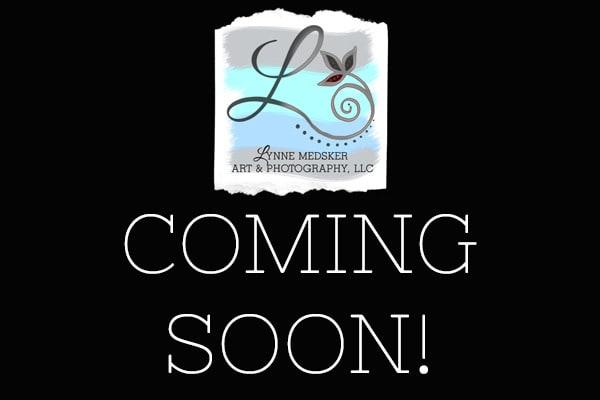 Coming Soon | Lynne Medsker Art & Photography, LLC
