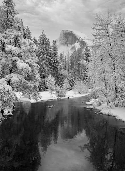 Frozen World Photography Art | Charlotte Gibb Photography