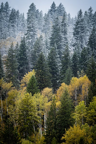 Tom Weager Photography - First snows on the mountainside
