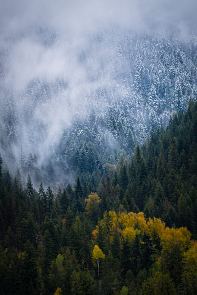 Tom Weager Photography - Meeting of Fall and Winter