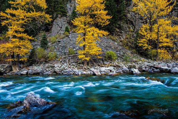 Fall Along The Gallatin Photography Art | John Winnie Jr. Photography