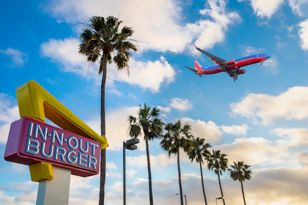 in n out, in and out, Los Angeles photography, airplane print, airport, palm trees, California photo