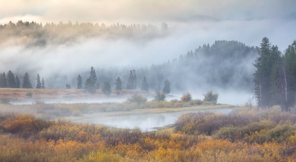 Waiting For The Grizzly Photography Art | Charlotte Gibb Photography
