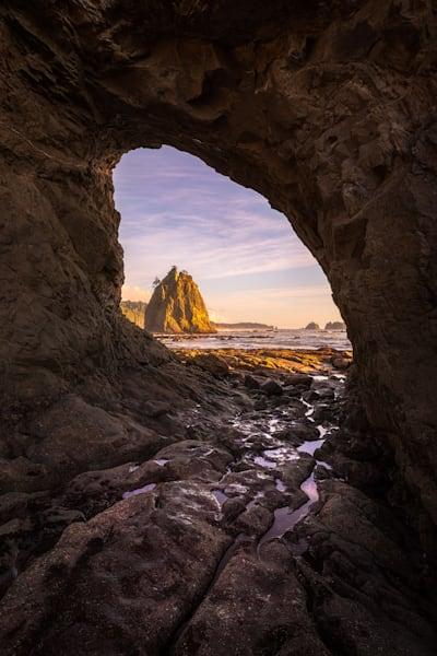 Nautilus Photography Art | Charlotte Gibb Photography