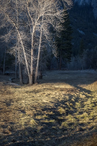Another Dry Winter Photography Art | Charlotte Gibb Photography