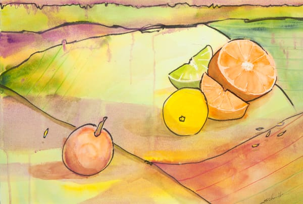 Citrus Art | Elaine Schaefer Hudson Art