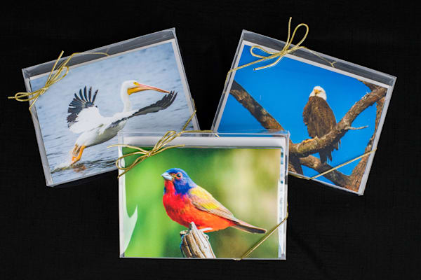 Set of 24 Note Cards in 3 Boxes - Series II