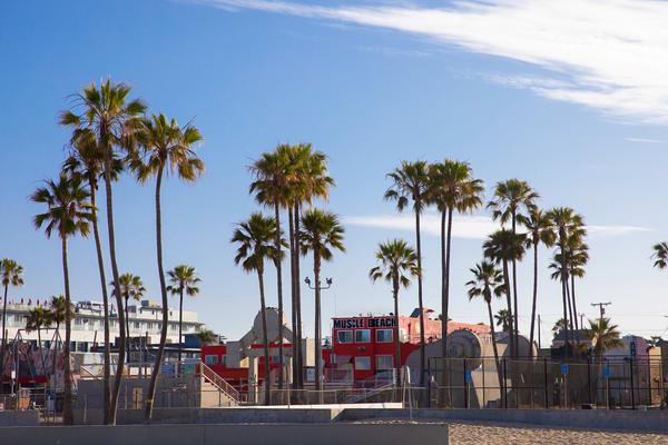 Muscle Beach, Venice Beach photo, Venice California, Beach Decor, Ocean Wall Art, Santa Monica, Los Angeles, California,