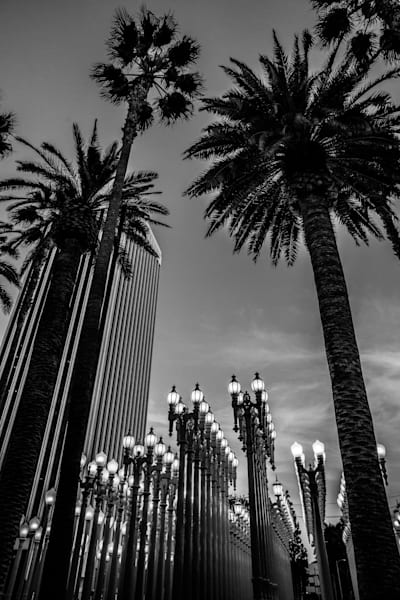 LACMA, Black and white Los Angeles Photo, LACMA lights print, California, museum,  travel photography, museum photography