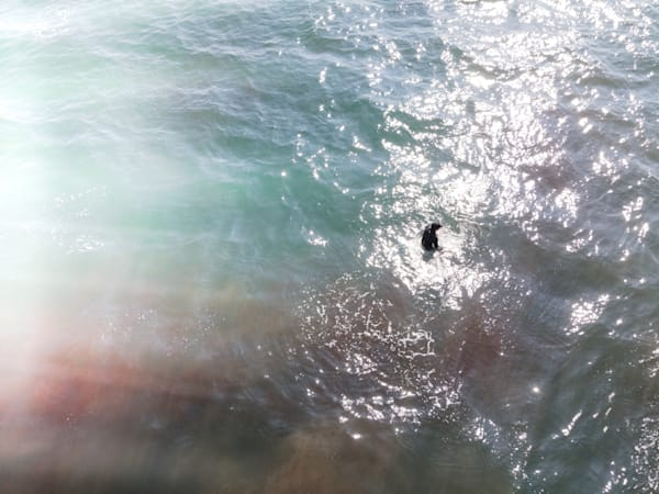 The Patient Surfer, Beach Photography, Ocean print, coastal wall art, Los Angeles, Malibu, California, Large Beach photo