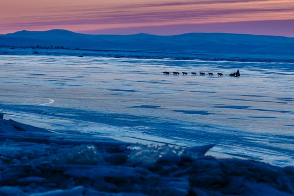 Michelle Phillips crosses Norton Sound a dawn as she nears  Koyuk on Monday March 10, during the Iditarod Sled Dog Race 2014.  PHOTO (c) BY JEFF SCHULTZ/Schultzphoto.com -- REPRODUCTION PROHIBITED WITHOUT PERMISSION
