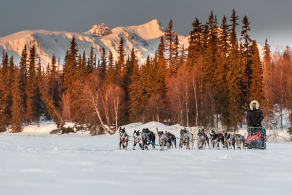 Charley Bejna runs on Finger Lake in the morning heading to the Finger Lake checkpoint during the 2019 Iditarod on Monday March 4, 2019.  Photo by Jeff Schultz/  (C) 2019  ALL RIGHTS RESERVED