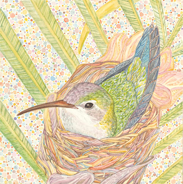 Hummingbird Mom in Nest. Original watercolor from Judy Boyd Watercolors.
