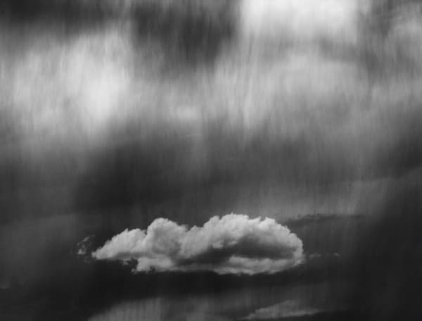 Rained Down Upon On A Moody Day Art | Karen Hutton Fine Art