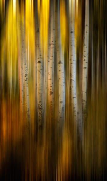 Emerging Art | Karen Hutton Fine Art