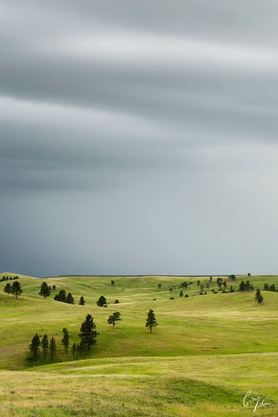 Constance Mier Photography - Fine Art Prints from South Dakota's Black Hill