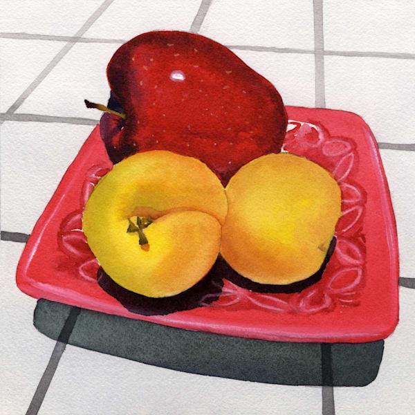 Apple & Apricots  Art | Machalarts Watercolor Studio