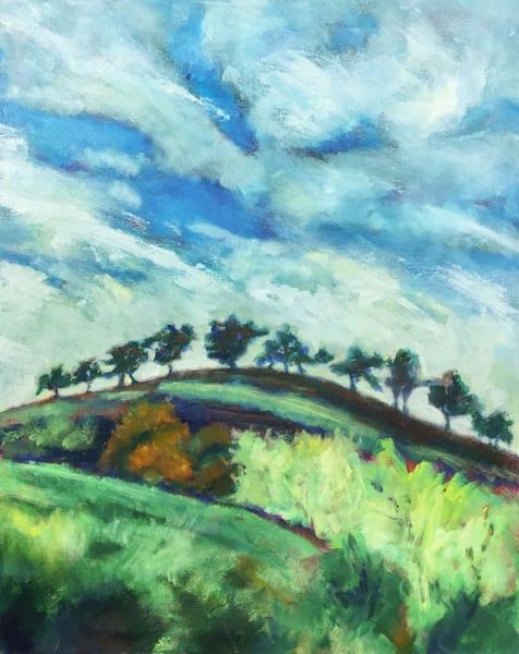 Solano Hills landscape