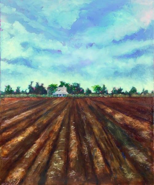 plowed earth farm field