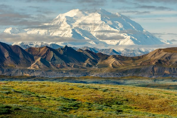 Summer/Fall-Autumn landscape of the North side of Denali (Mt. Mckinley) and tundra in Denali National Park   Alaska