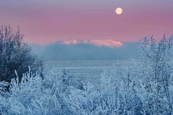 Winter Landscape of full moon setting over Mt. Susitna (sleeping lady) over Cook Inlet with fog rising from open water. Ice floes. Hoarfrost on  trees and shrubs.  Sunrise. Anchorage. Winter Southcentral, Alaska   Photo by Jeff Schultz/  (C) 2020