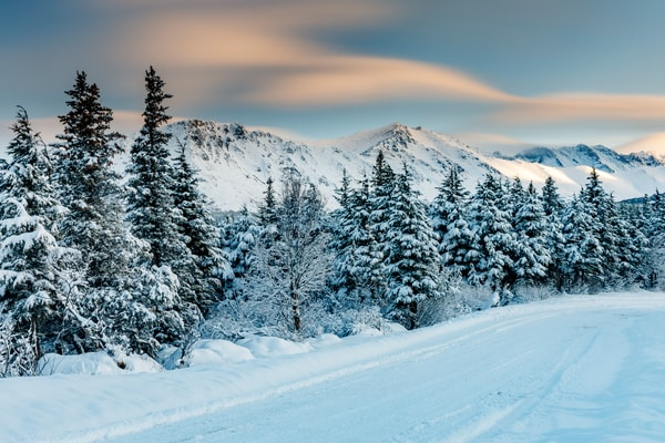 Winter Landscape of snow-covered trees and Chugach Mountains in early morning light. Chugach State Park, Alaska  Photo by Jeff Schultz/  (C) 2020  ALL RIGHTS RESERVED