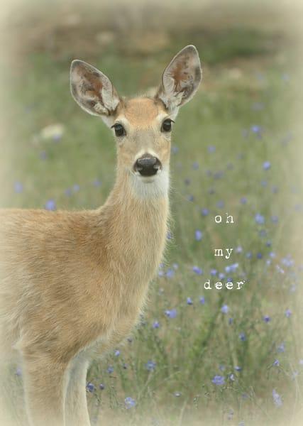 Oh my Deer Art