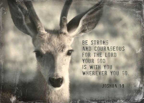 Be Strong & Courageous Baby Buck Art
