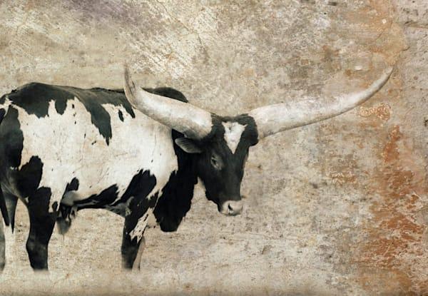 Black and White Longhorn Art