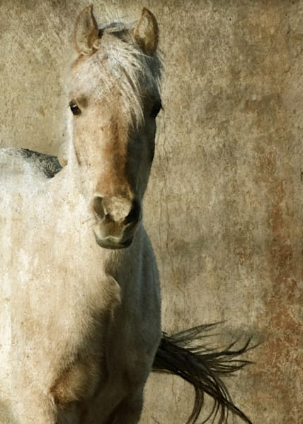 PALOMINO HORSE Muted Tones Art