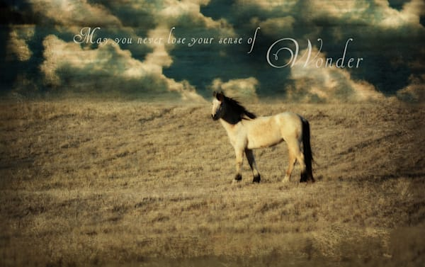 BUCKSKIN HORSE with quote Art