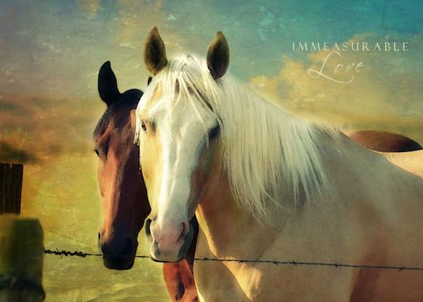 Immeasurable Love Horses