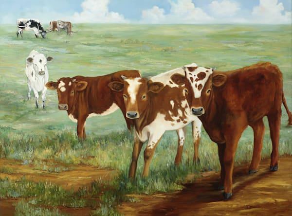 Longhorn Legacy Art | Marsha Clements Art