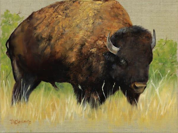 Standing Bull Art   Marsha Clements Art