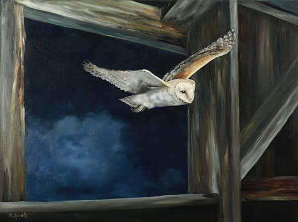 Night Flight Art | Marsha Clements Art