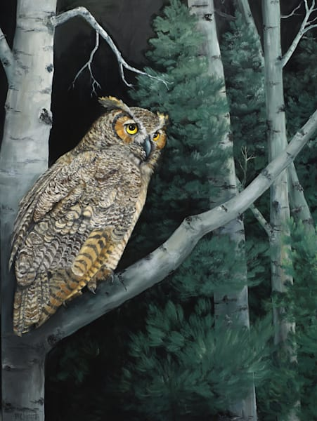 Night Owl Art | Marsha Clements Art