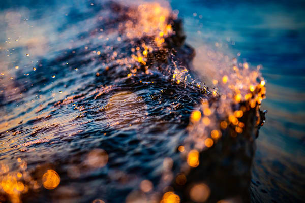 Windy Wall Photography Art | Vitamin Sea Photography