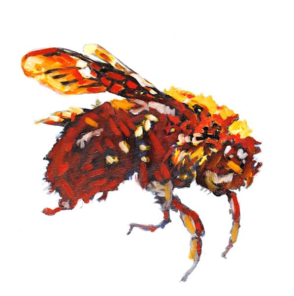 bumble bee, grumble, bee, pollinator, bug