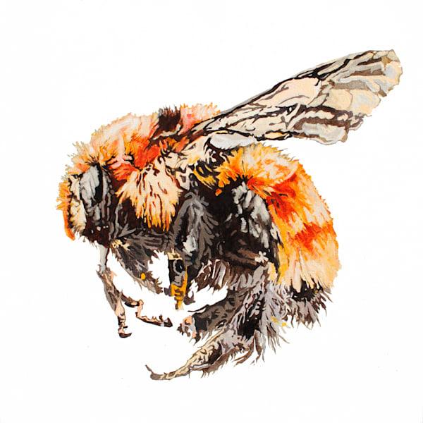 bumble bee, art, bee, pollinator, sleepy