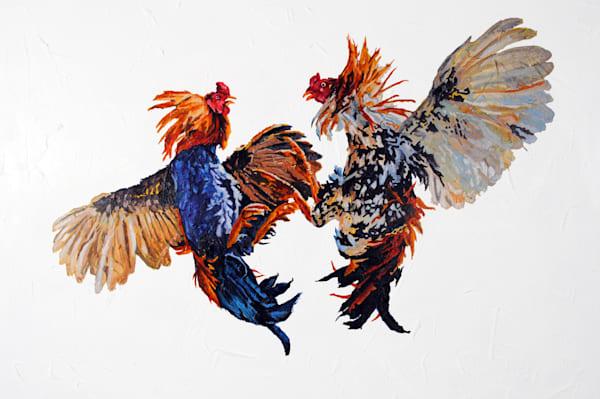 rooster, cockfight, chicken, birds, farmyard