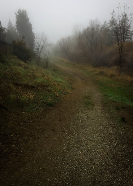North Davis Channel  Path Art | Patrick Cosgrove Art and Photography
