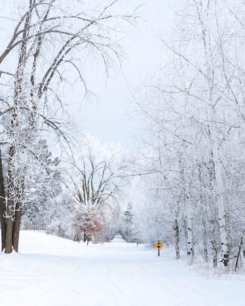 Heartland Trail   Winter Art | studio176