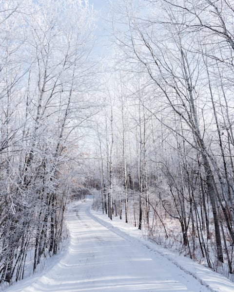 Simonson   Winter