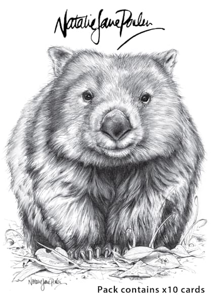 Sketches Postcards Booklet Set of 10 - Featuring Australian Native Wildlife